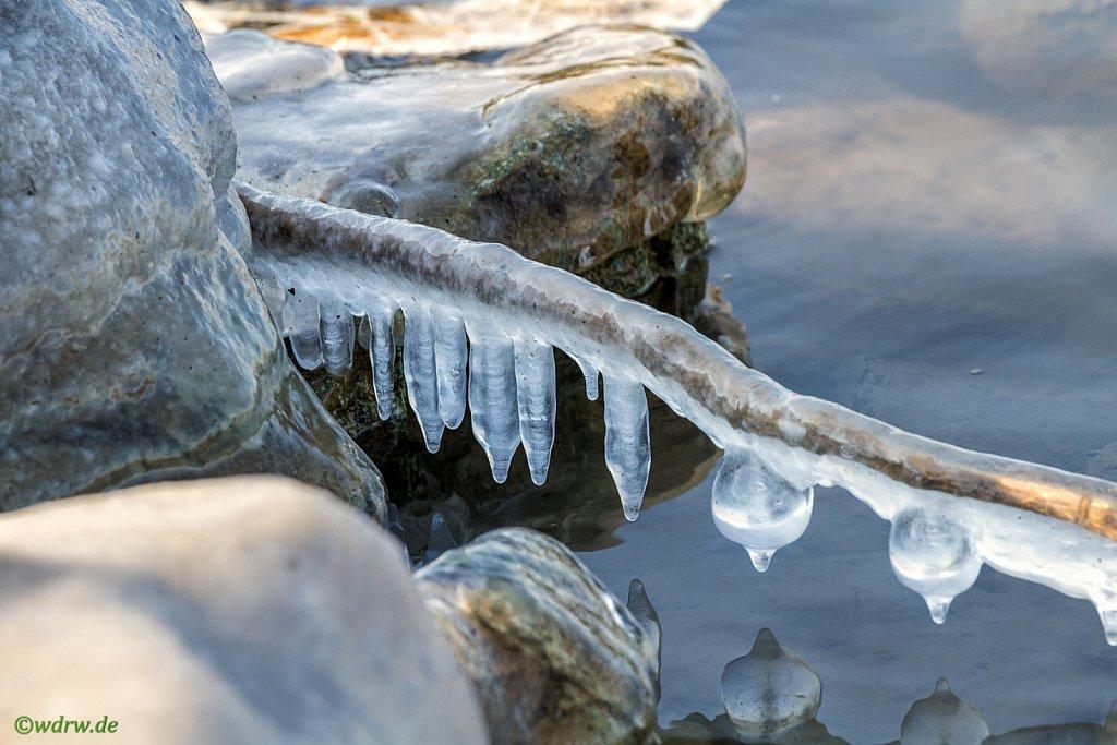 eingefrorenes Rheinufer